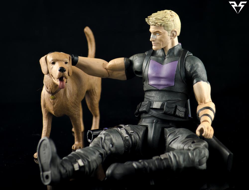 Hawkeye-Pet.png