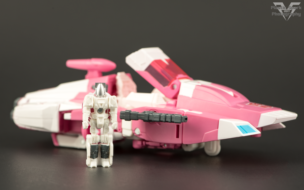 Hascon-Arcee-(2-of-7).png