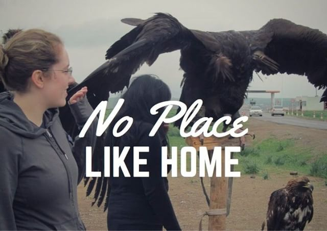 Only three more days till #WinnipegFringe !  Excited to show off my new standup travel memoir, No Place Like Home.  Snag tickets here: http://www.winnipegfringe.com/performer-detail.aspx?kw=Elaine+Phillips  #winnipegfringefest