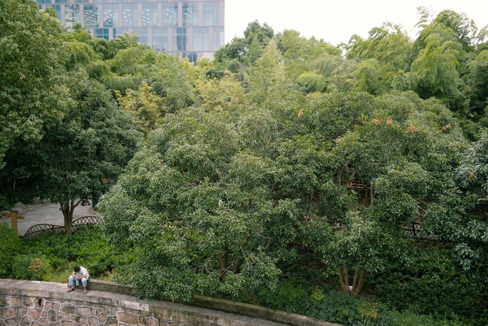 上海緑地シリーズ:落ち込む少年