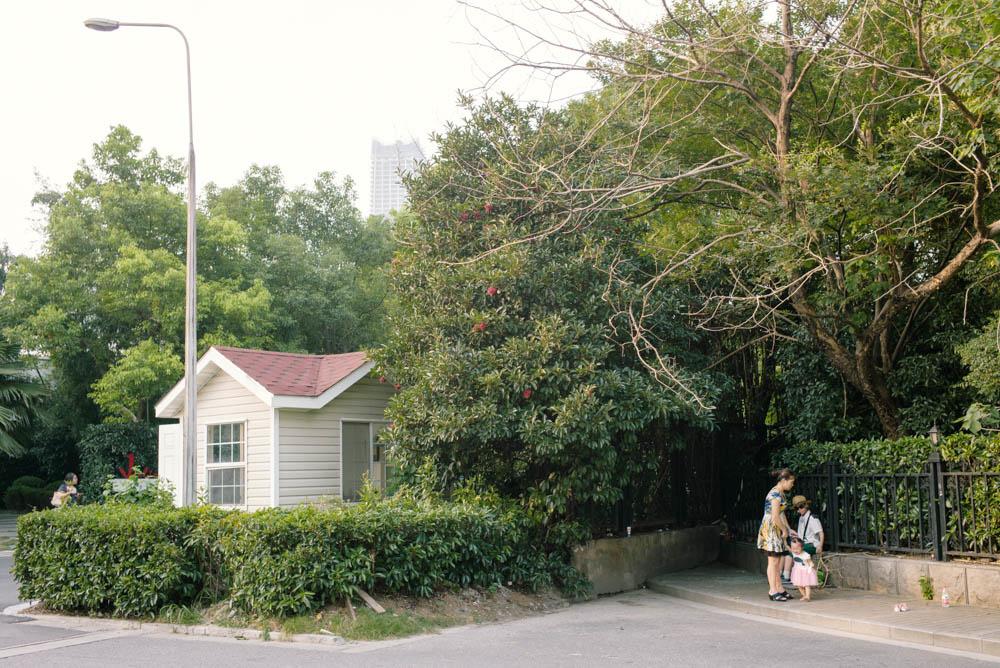上海緑地シリーズ:潜む家族