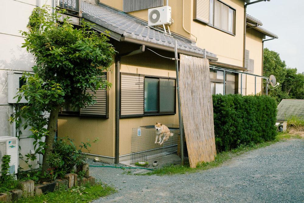 Mankichi_Shinshi_30.jpg