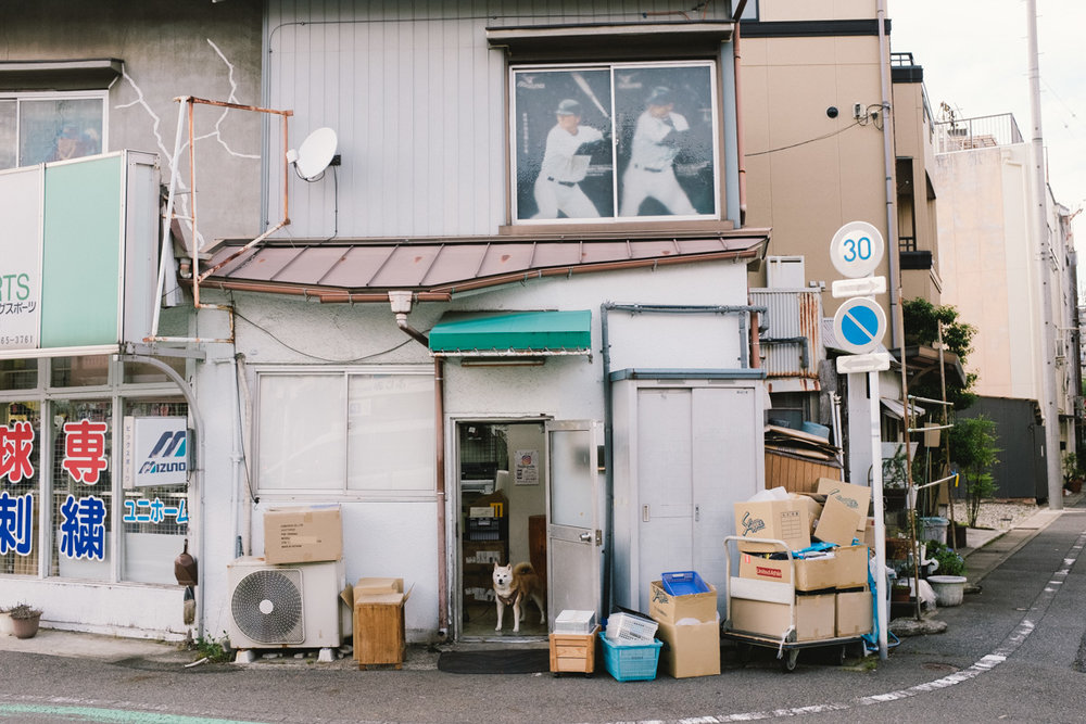 6月の岐阜(左の写真と同日)