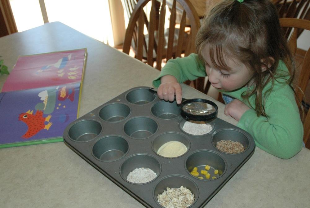 Examining Grains