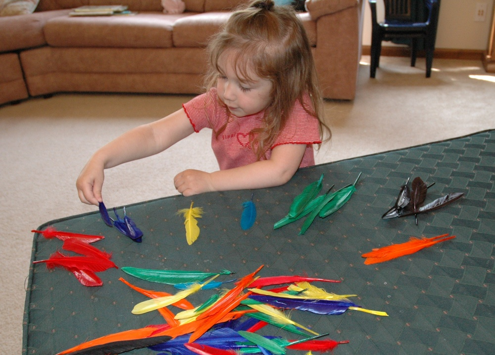 Sorting Feathers by Color