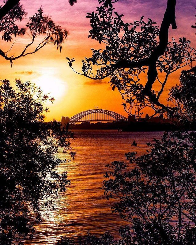 Falta pouco... contagem regressiva! Austrália é dos primeiros países a entrarem no Ano Novo! E você? Vai assistir a queima de fogos de onde? 👍🏽😊👏🏾 #360degree #threesixty #newyearseve #sydney #harbourbridge #nye #fireworks #intercambio #experience #explore #australia #bringiton #anonovo  #Repost @sydney ・・・ 📷 @drruthcollins