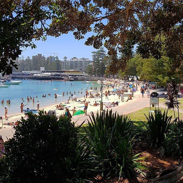 Se você não tem um guarda-sol, melhor se proteger. Chapéu, boné, protetor solar, óculos de sol e muita água! O sol nessa Austrália costuma tostar, então be smart e aproveite o dia! ☀️ 🏖 👍🏽 #360degree #threesixty #summertime #hothothot #sun #beach #ocean #funtimes #intercambio #moradora #sabatico #australia via @manlybeachaustralia 👏🏾