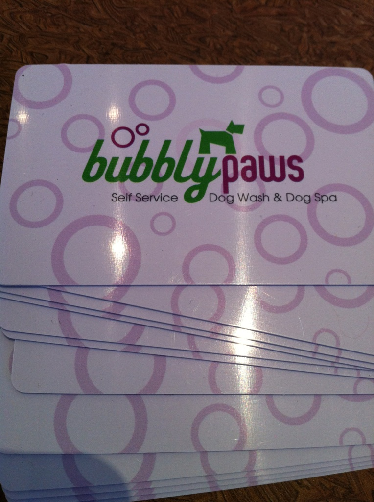 bubbly paws dog wash and dog grooming gift card