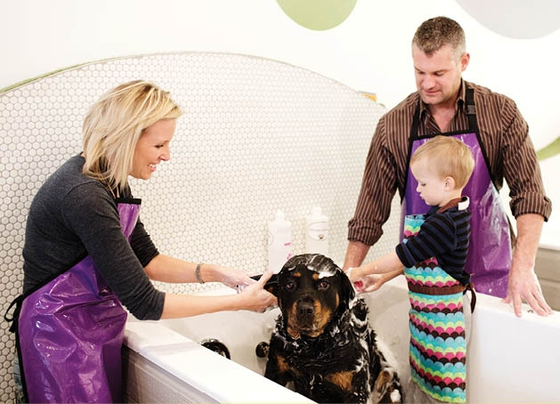 Full service dog wash opens third location in twin cities bubbly just in time for the holidays treat your pup to a full or self service wash or professional grooming at the newest bubbly paws location at the shops at solutioingenieria Gallery