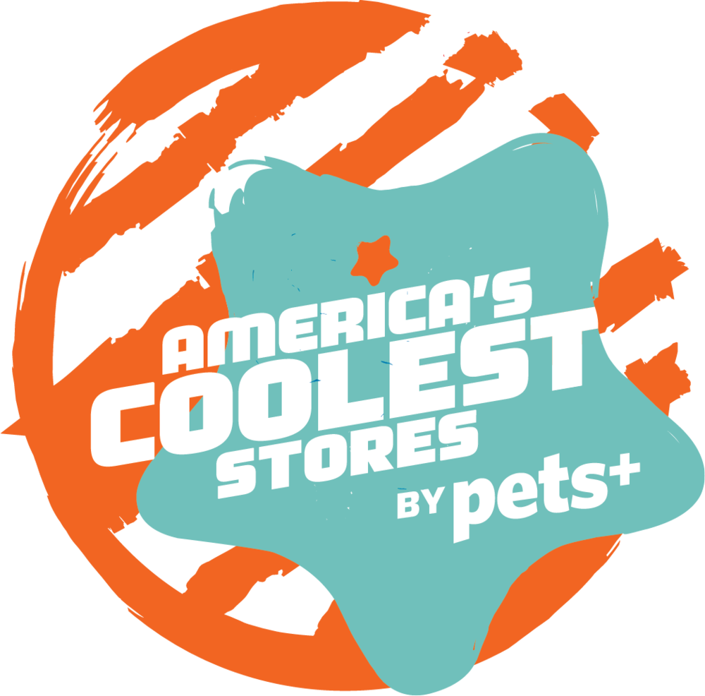 Americas coolest pet business bubbly paws self service dog americas coolest pet business bubbly paws self service dog wash and grooming twin cities mn solutioingenieria Choice Image
