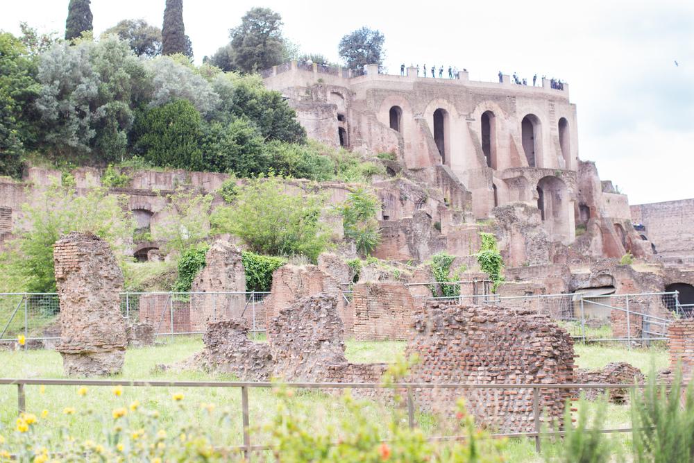 Rome21.jpg