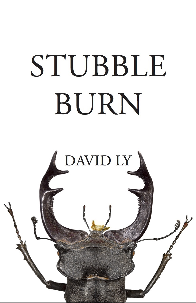 Cover of David Ly's  Stubble Burn  (2018)
