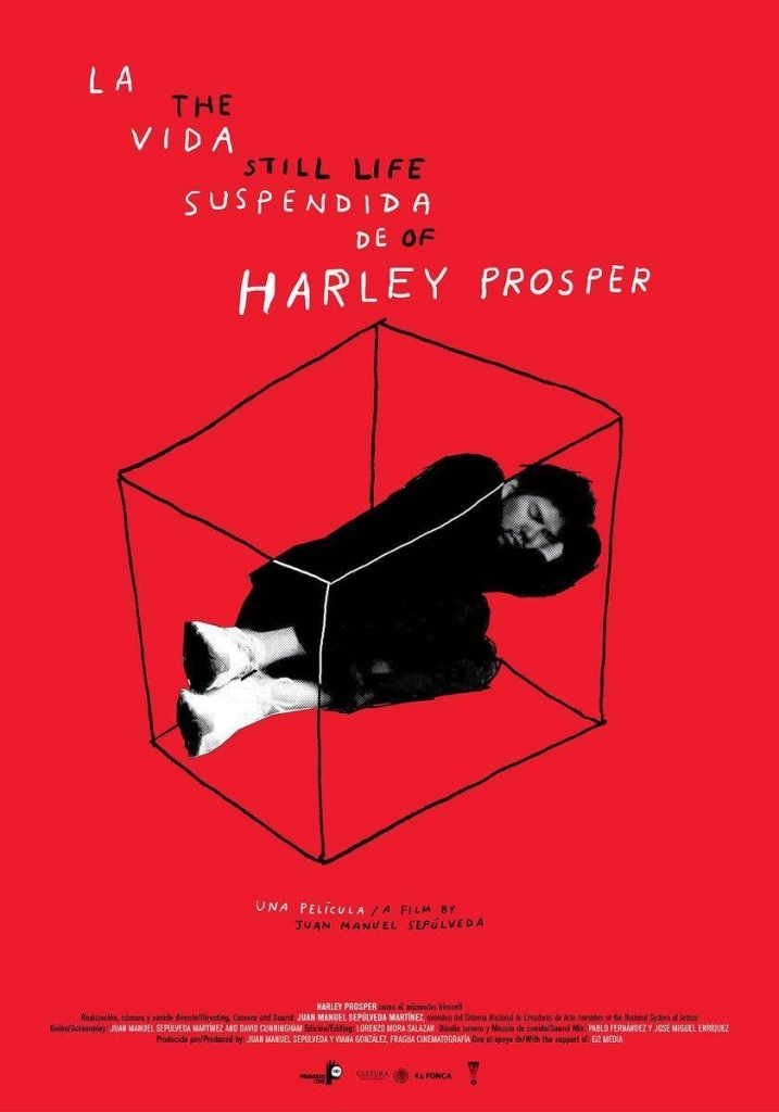 La Vida Suspendida de Harley Prosper Poster via VLAFF.
