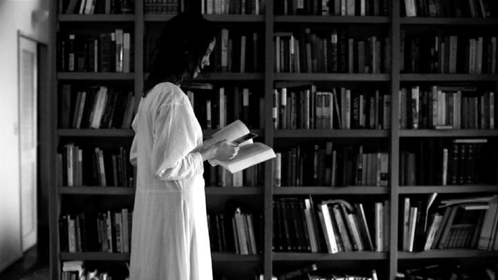 antonionianstill_library.jpg