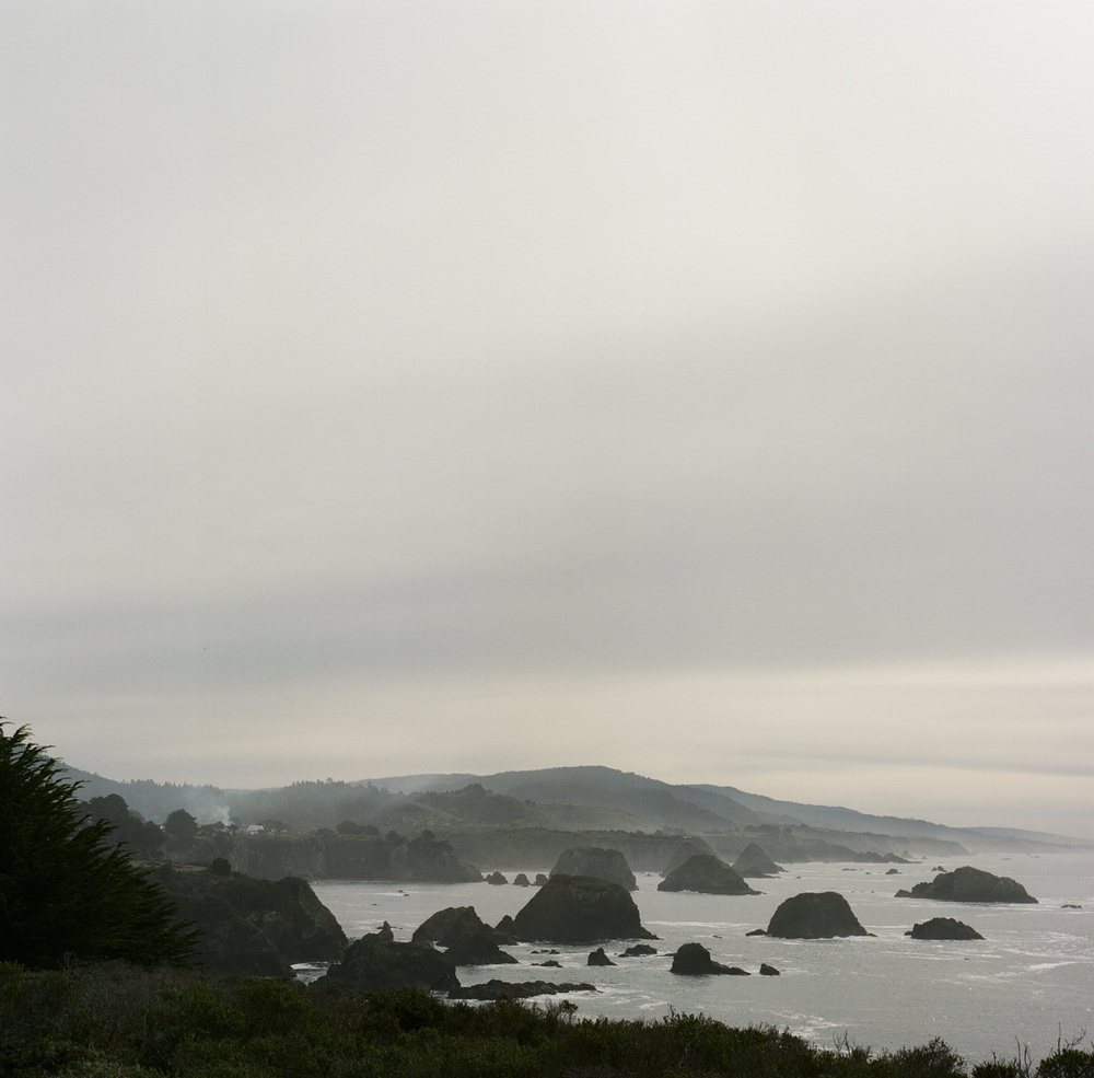 On the last day, we journeyed down the coast and made a pit stop at the Halprin's Sea Ranch home on our way  Anna's dance workshop  in Kentfield.