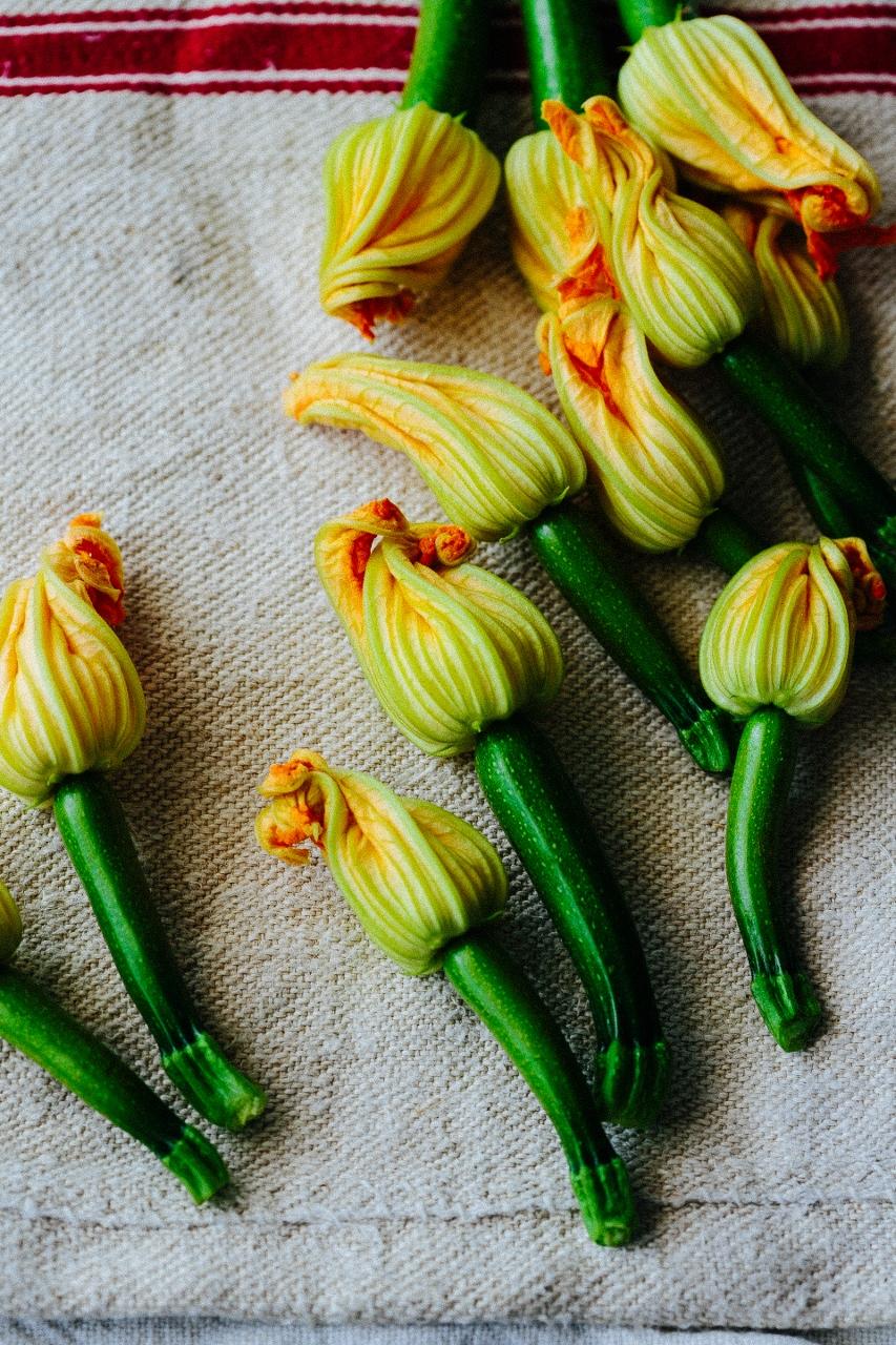 Squash zucchini blossoms VyTran (12 of 16) (853x1280).jpg