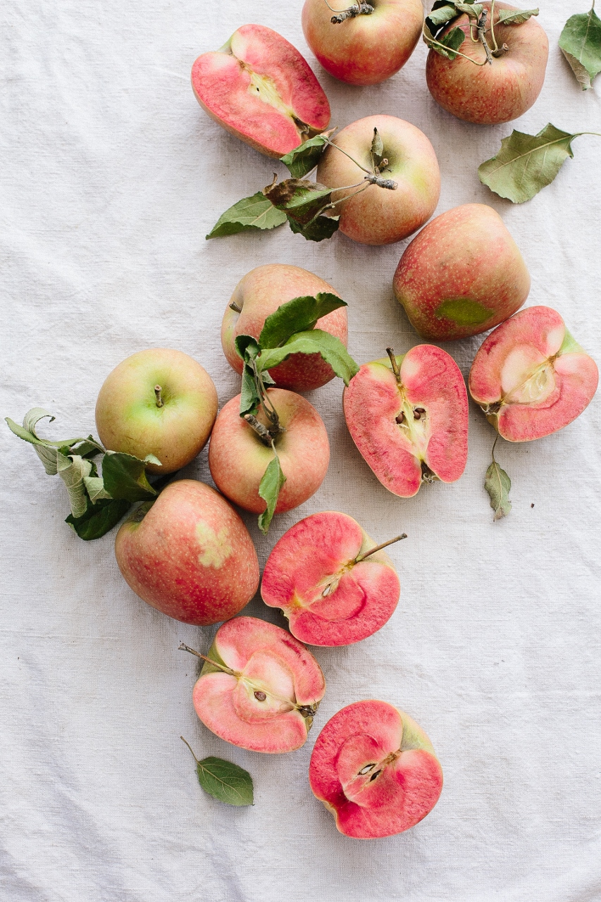 Hidden Rose Apples Vy Tran (2 of 2) (853x1280).jpg