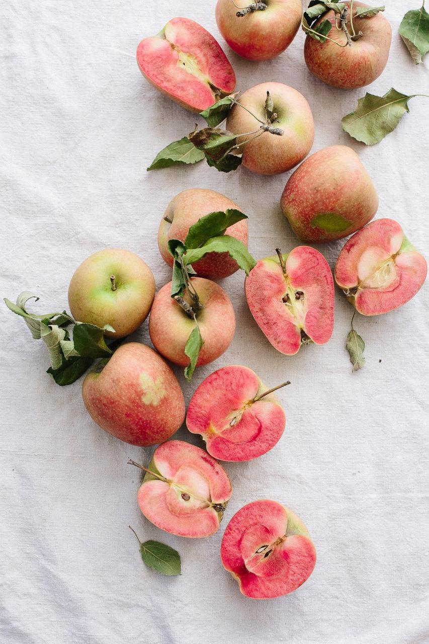 Hidden Rose Apples Vy Tran (2 of 2) (853x1280).jpg