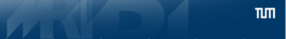 Header der Website  https://www.psykl.mri.tum.de  (Klinik und Poliklinik für Psychiatrie und Psychotherapie am Klinikum rechts der Isar Technische Universität München)