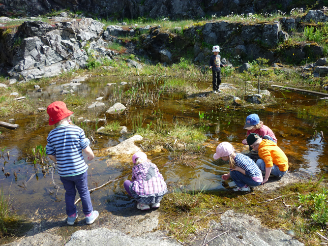 På-Rindö-Redutt-barnen-hittar-grodyngel.jpg