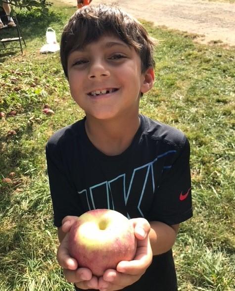 apple 12.jpg