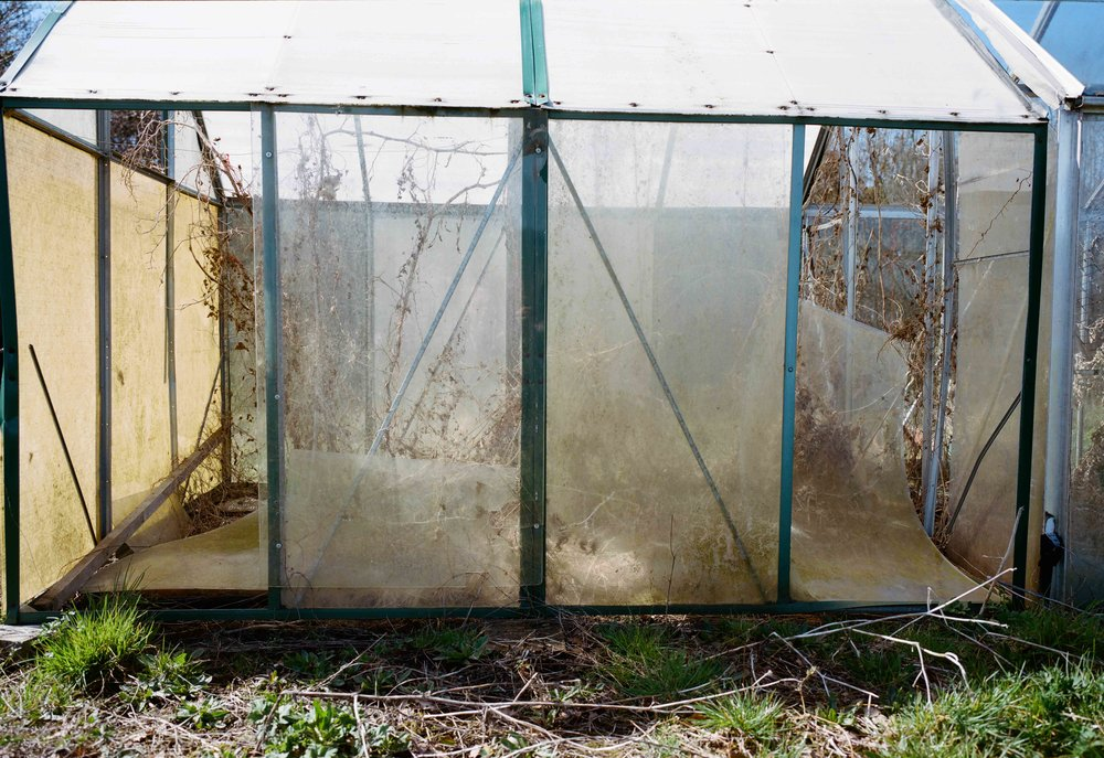 allotment6x9lowres (5 of 8).jpg