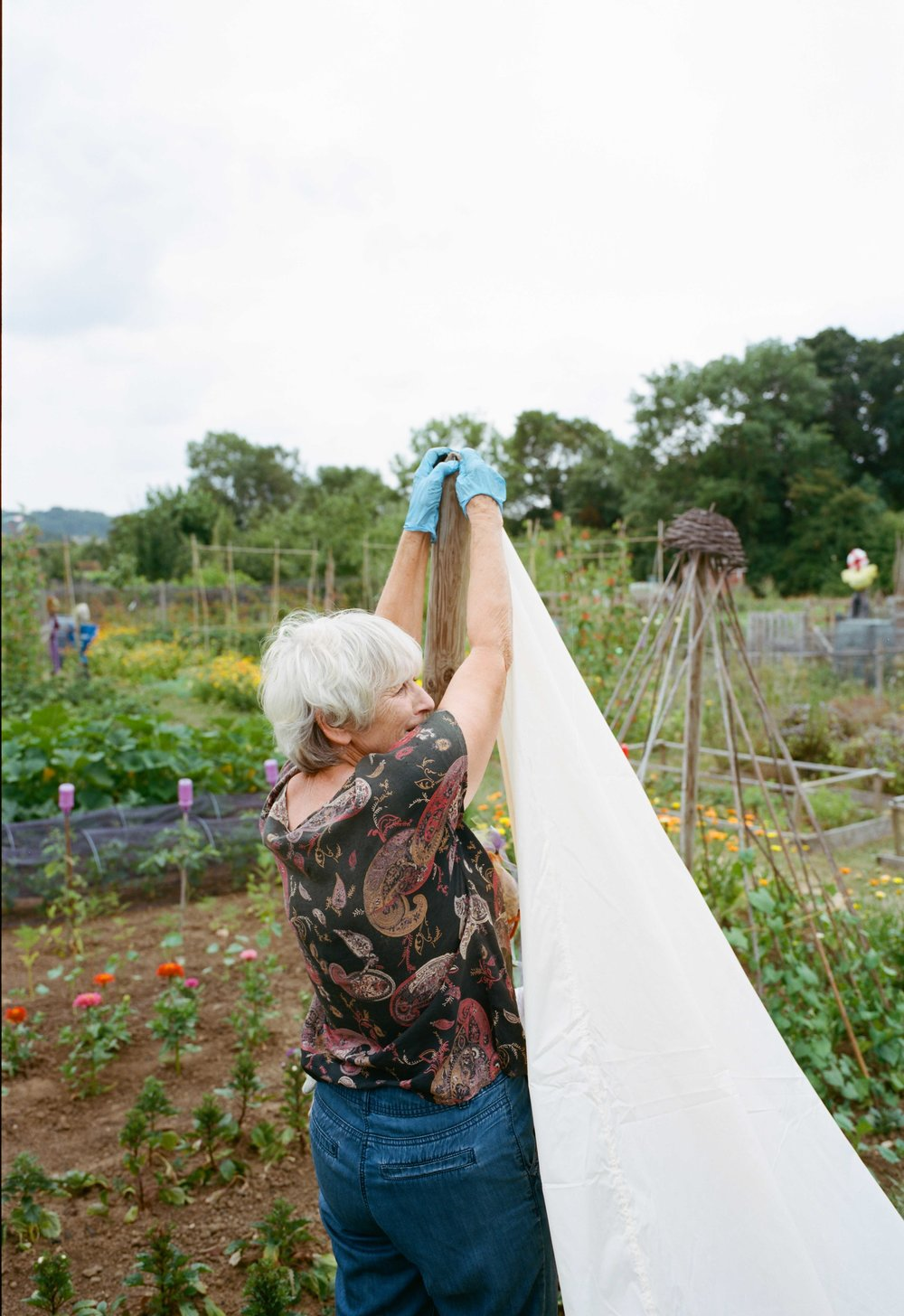 allotments (56 of 56).jpg