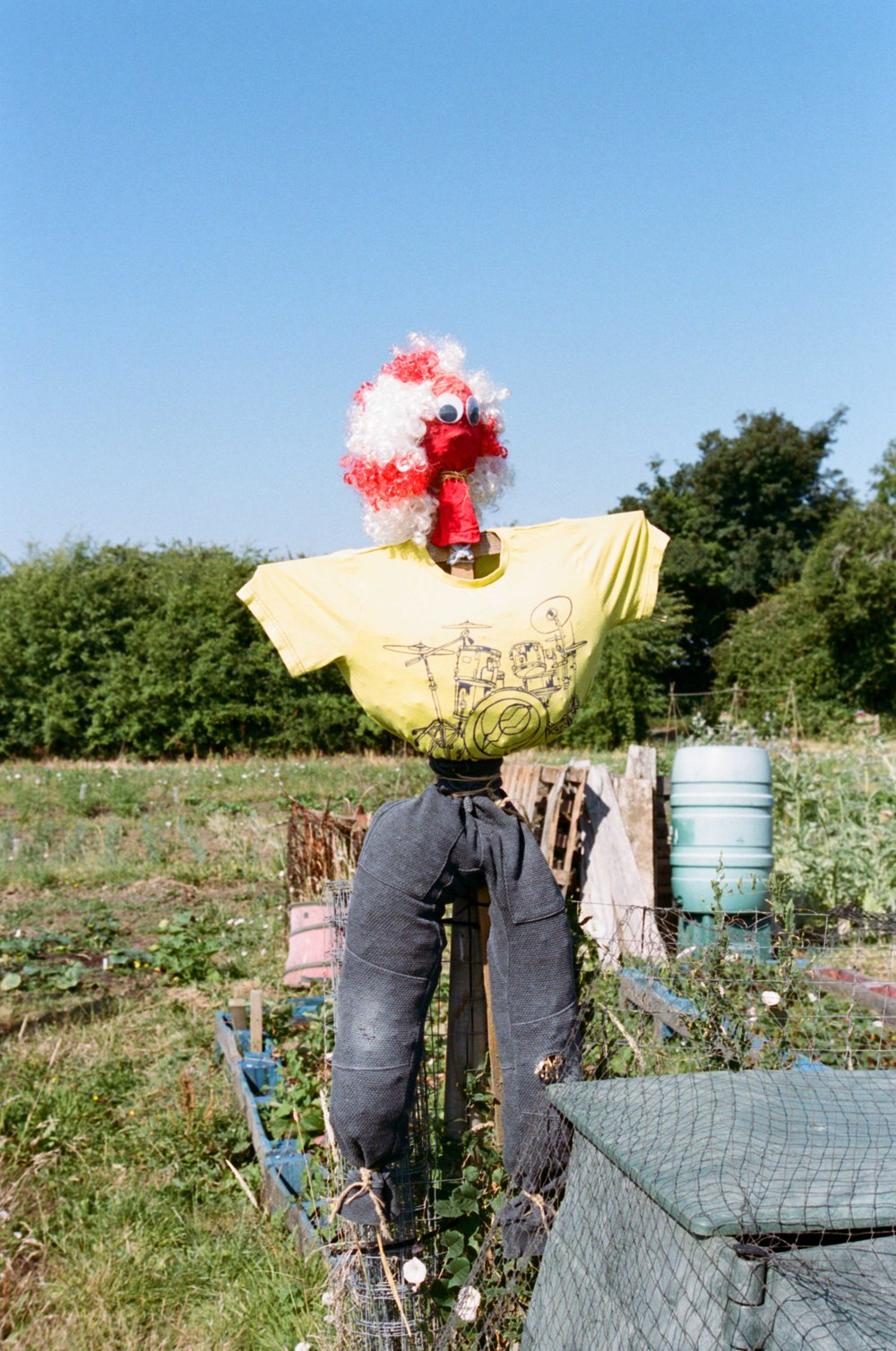 allotments (48 of 56).jpg