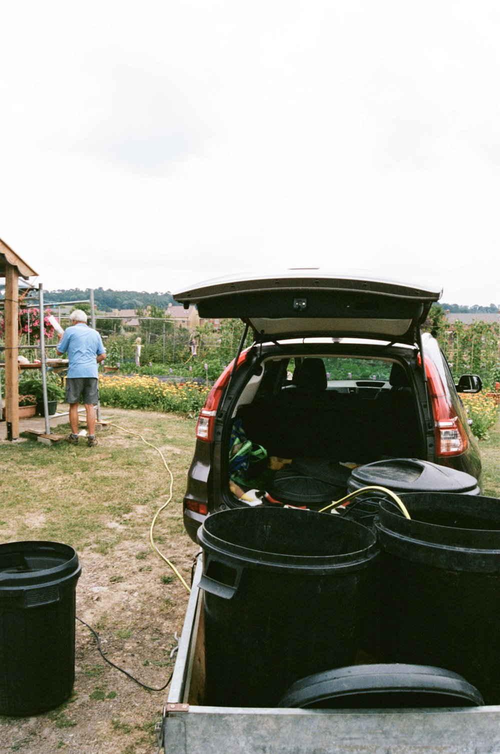 allotments (17 of 56).jpg