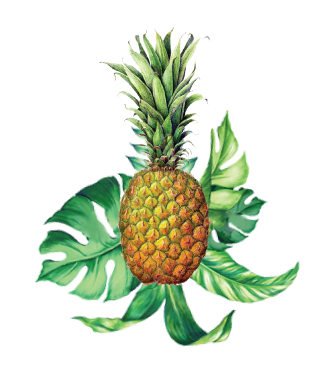 pineapple-with-leaves.png