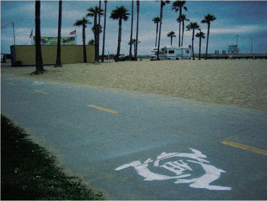 AFI_beach.jpg
