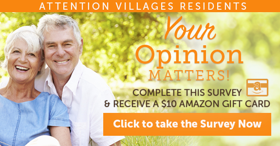 Villages Digital Ads_575x300v1.jpg