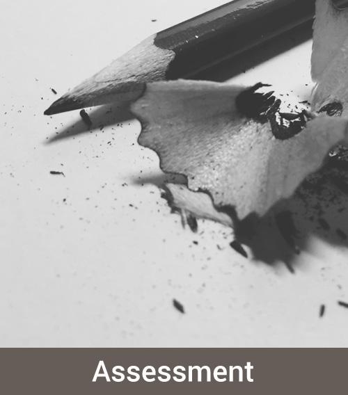 assessment_rob.jpg