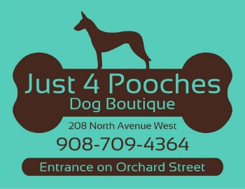 Established in 2004, Just4Pooches is a unique store specializing in customized care, pet nutrition and overall health and creative, one-of-a-kind toys and gifts.  Here, you can buy any food or treat with confidence.  The store's entire inventory is all-natural and none of the food or treats contain fillers or by-products.