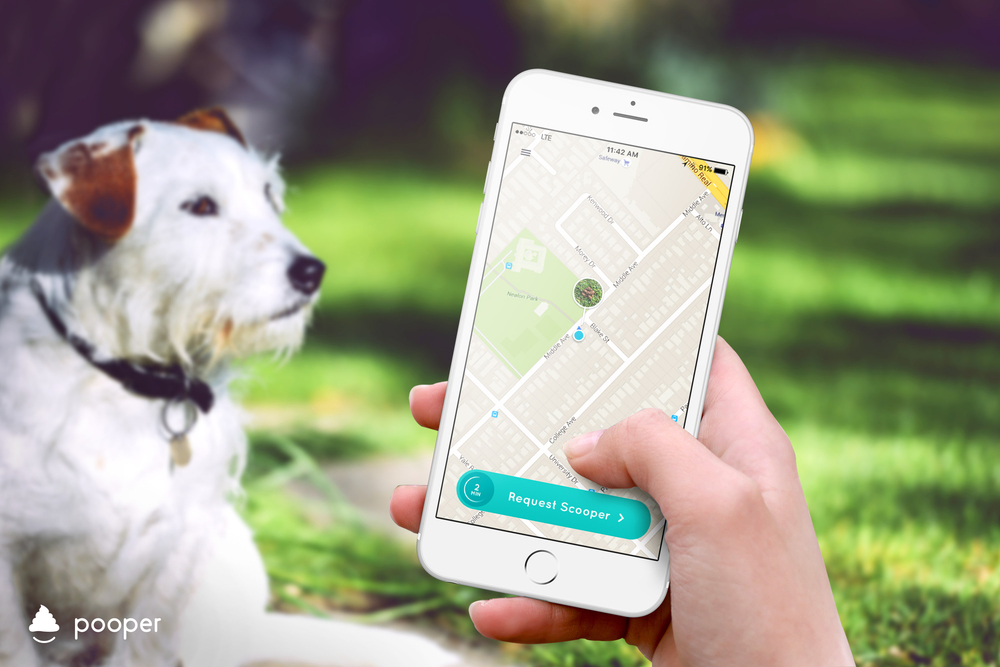 The Pooper app turned out to be an art project aimed at satirizing our app-obsessed culture.  Does your dog poop?  There's an app for that.