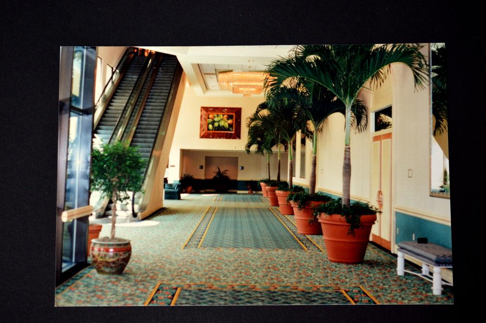 Fort Lauderdale Hotel.JPG