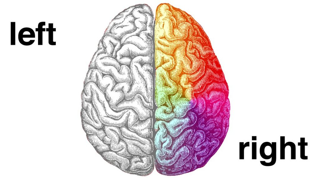 photo credit epilepsy.com