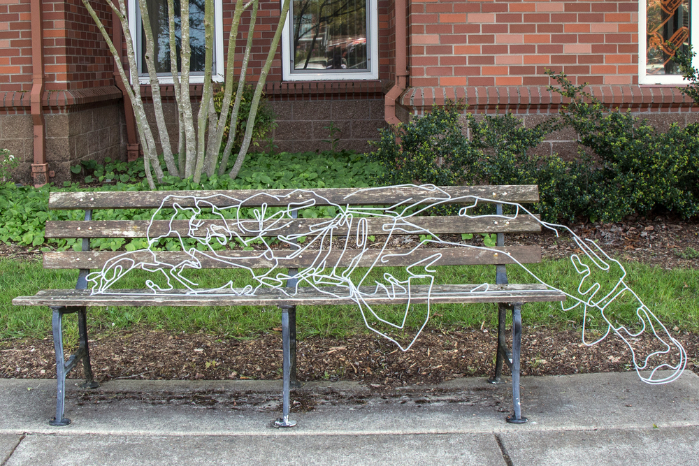 steel wire & spray paint  Site Specific Installation  Oregon State University  2014