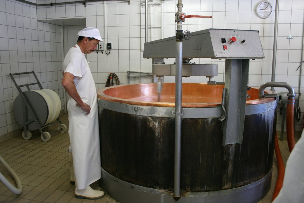 The cheesemaker inspecting the vat