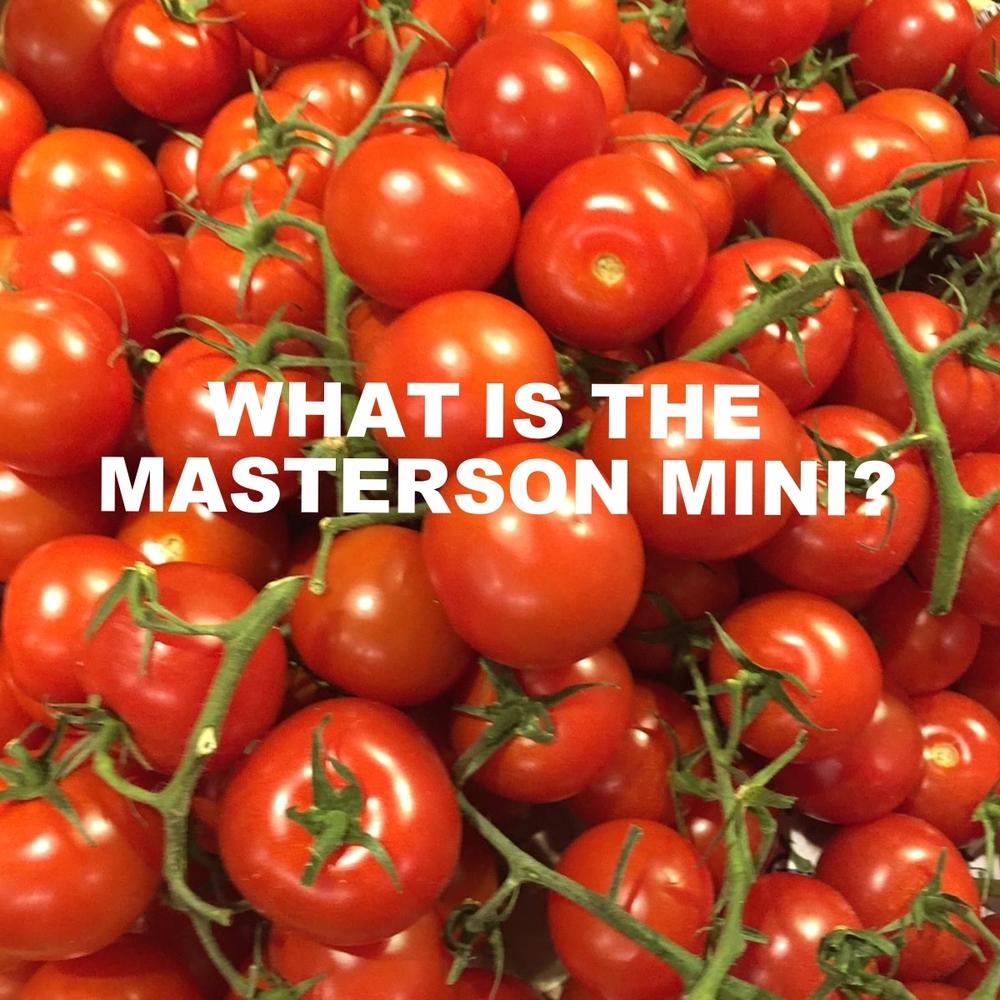 galadriel masterson, masterson mini