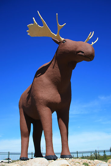 dmckesq-moose-jaw.jpg