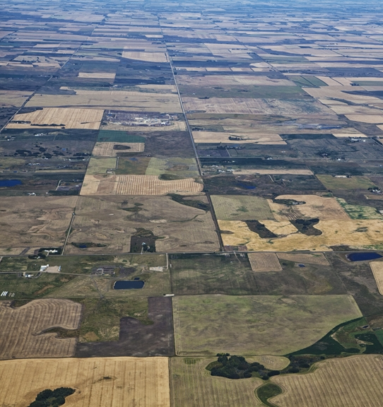 alberta-from-the-air_img_1949.jpg