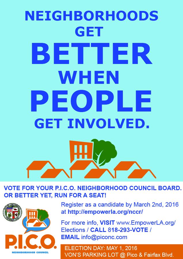 P.I.C.O. NC Elections - vote or run!.jpg