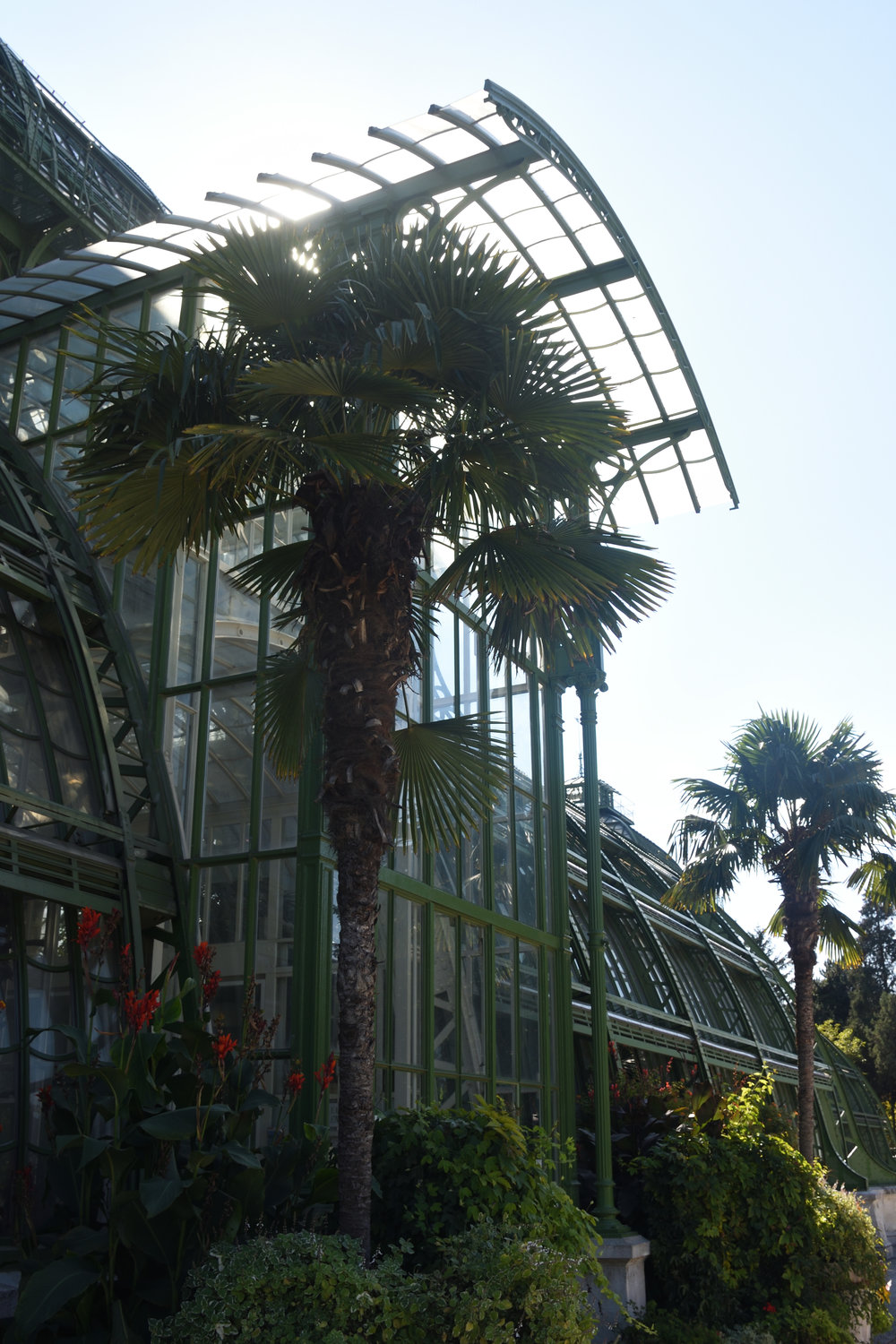 The Schönbrunn Palm House, Vienna 2016