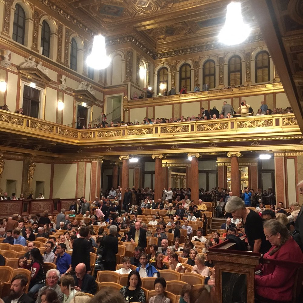 Evening at Musikverein, Vienna 2016