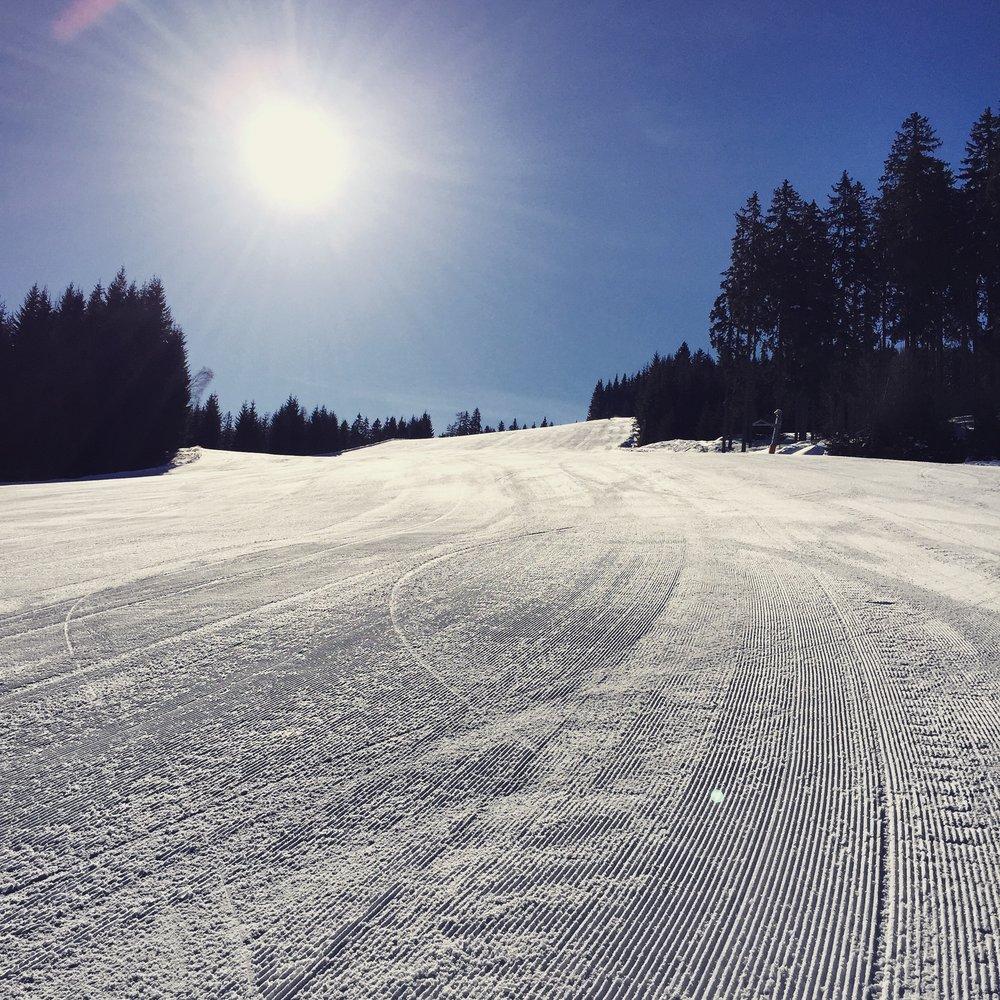 Flachau Ski Area, 2016