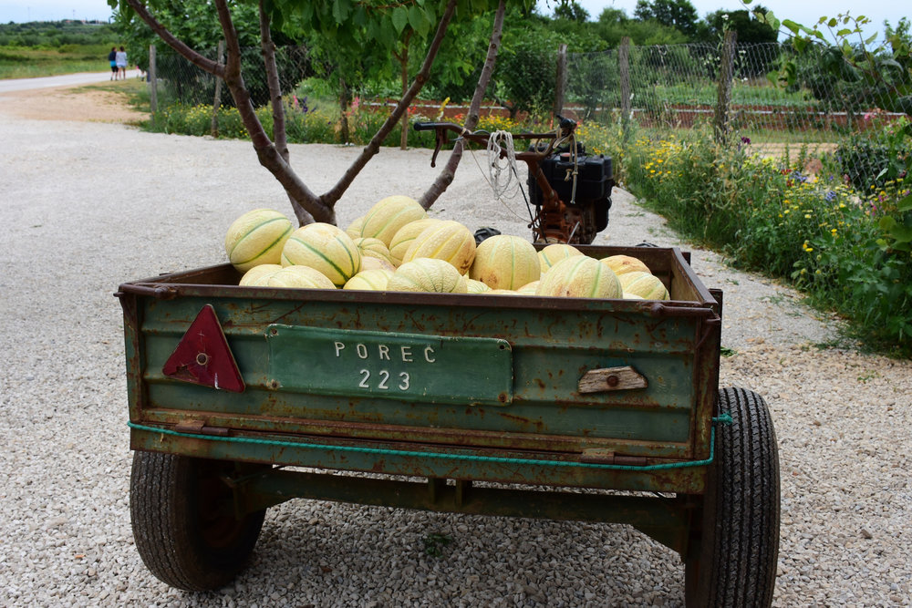 Melons, Porec 2016