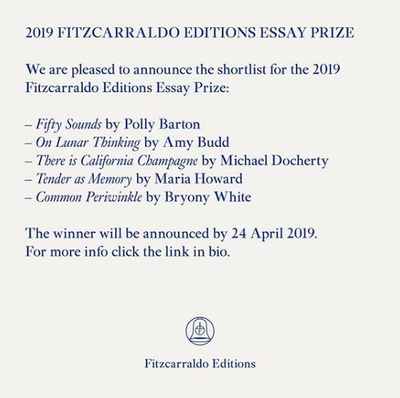 Fitzcarraldo editions essay prize Maria Howard Tender as Memory