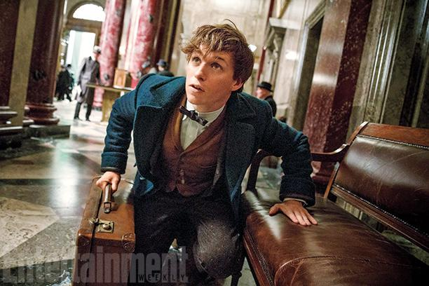 fantastic-beasts-and-where-find-them-newt-scamander_0.jpg