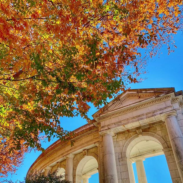 I think DC finally realized what season it is 🍁🍂🧡 • • • • #autumnleaves #autumn #arlingtonnationalcemetery #arlingtonmemorialamphitheater #myDCcool #DC #igdc